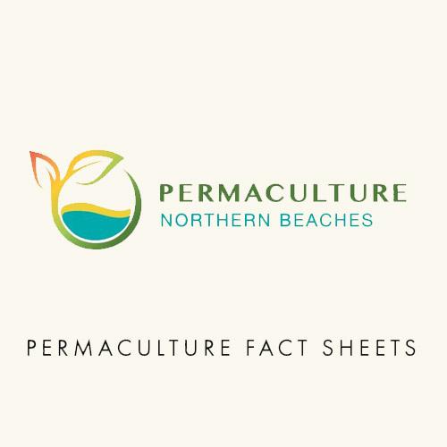 PNBfactsheets2